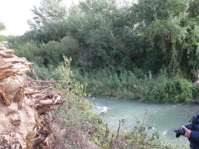 El río Tajo antes de unirse al Jarama. Foto: Charo R.