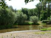 El agua del Alberche a su paso por Escalona es apta para el baño, según Sanidad