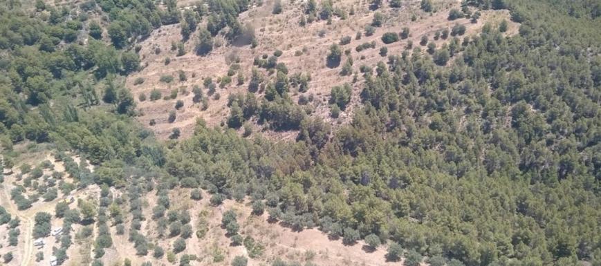 Zona del nuevo incendio declarado en Yeste